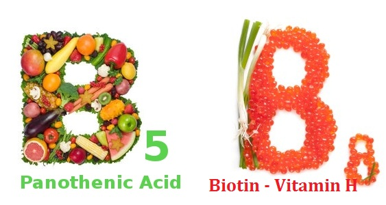 thiếu hụt Vitamin B5 và Biotin gây rụng tóc