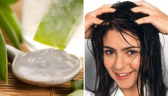 nha đam chữa rụng tóc từng mảng