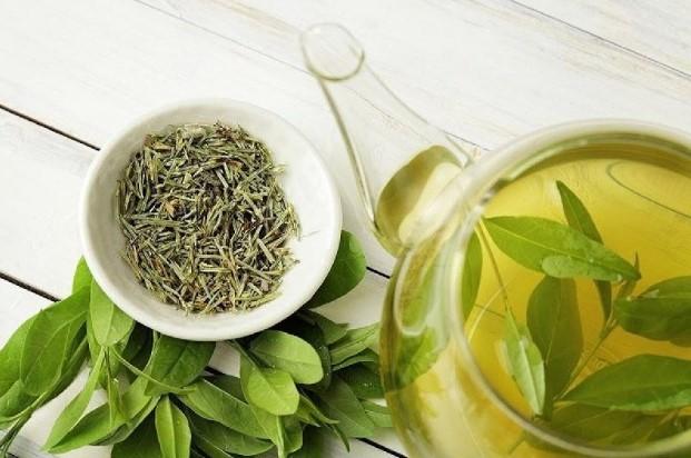 trà xanh trị tóc dầu bết dính