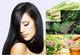 Chữa bệnh rụng tóc bằng thảo dược