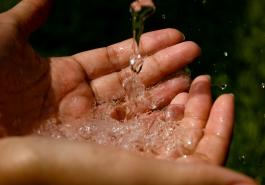 Thay đổi nguồn nước có khiến tóc rụng nhiều?