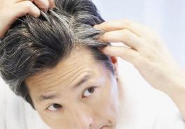 Trị tóc bạc hiệu quả với hà thủ ô đỏ